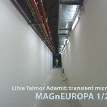 MAGnEUROPA Lihie Talmor Cover