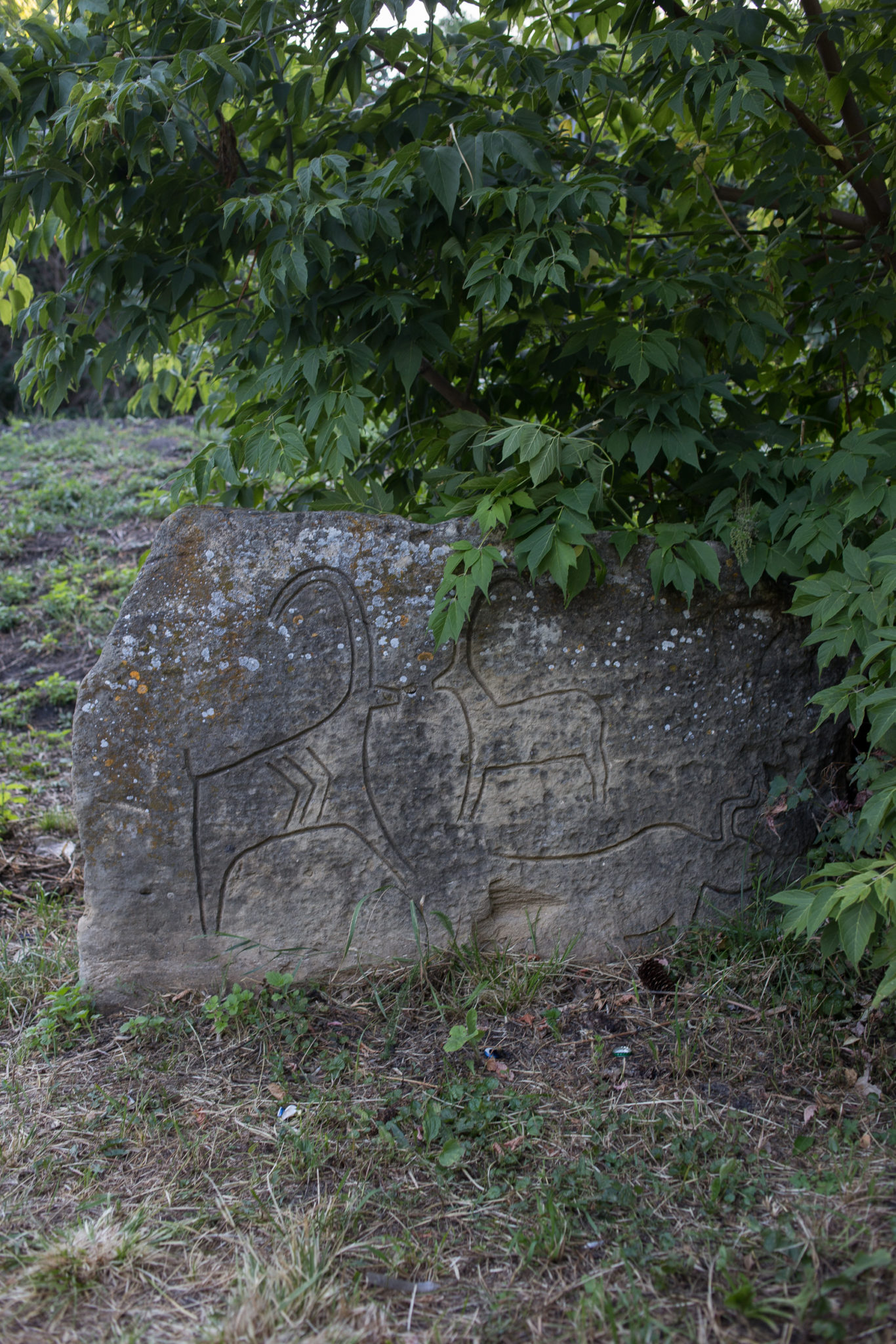 Mini Gobustan rock carvings, which depict primitive people, animals, battle-pieces, ritual dances, bullfights, boats with armed oarsmen, warriors with lances in their hands, camel caravans, pictures of sun an stars.